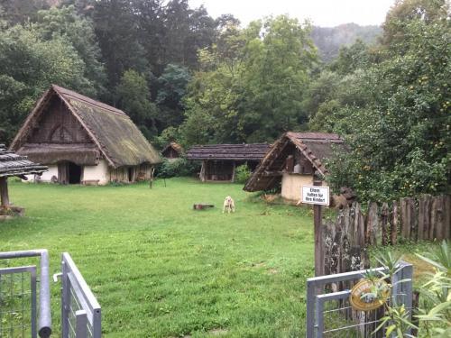 Besuch Keltendorf Elsran